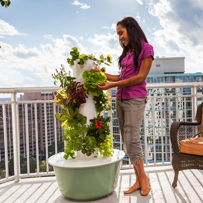 Tower Garden grows nutrient-loaded produce